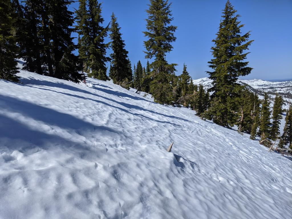 "Rough snow surfaces on the northerly <a href=""/avalanche-terms/aspect"" title=""The compass direction a slope faces (i.e. North, South, East, or West.)"" class=""lexicon-term"">aspects</a> of Rubicon Peak."