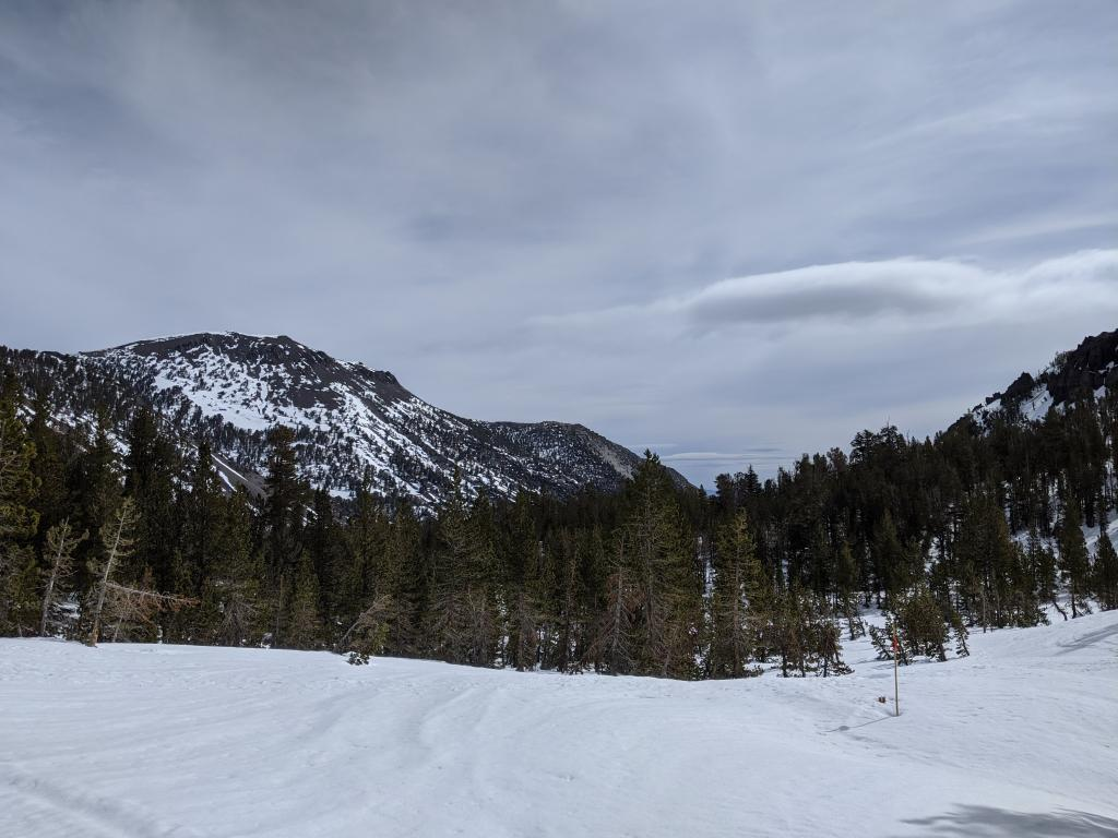 "Lots of bare ground on true S <a href=""/avalanche-terms/aspect"" title=""The compass direction a slope faces (i.e. North, South, East, or West.)"" class=""lexicon-term"">aspect</a> terrain looking towards Mount Rose proper."