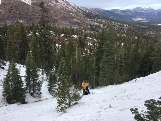 "<a href=""/avalanche-terms/snowpit"" title=""A pit dug vertically into the snowpack where snow layering is observed and stability tests may be performed. Also called a snow profile."" class=""lexicon-term"">Profile</a> <a href=""/avalanche-terms/snowpit"" title=""A pit dug vertically into the snowpack where snow layering is observed and stability tests may be performed. Also called a snow profile."" class=""lexicon-term"">pit</a> location on NNW <a href=""/avalanche-terms/aspect"" title=""The compass direction a slope faces (i.e. North, South, East, or West.)"" class=""lexicon-term"">aspect</a> at 8,475&#039;."