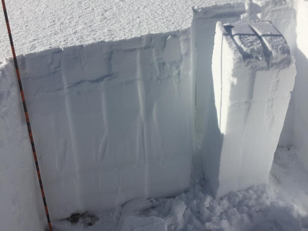 """CT results : Sudden <a href=""""/avalanche-terms/collapse"""" title=""""When the fracture of a lower snow layer causes an upper layer to fall. Also called a whumpf, this is an obvious sign of instability."""" class=""""lexicon-term"""">Collapse</a> on <a href=""""/avalanche-terms/faceted-snow"""" title=""""Angular snow with poor bonding created from large temperature gradients within the snowpack."""" class=""""lexicon-term"""">facets</a> near ground."""