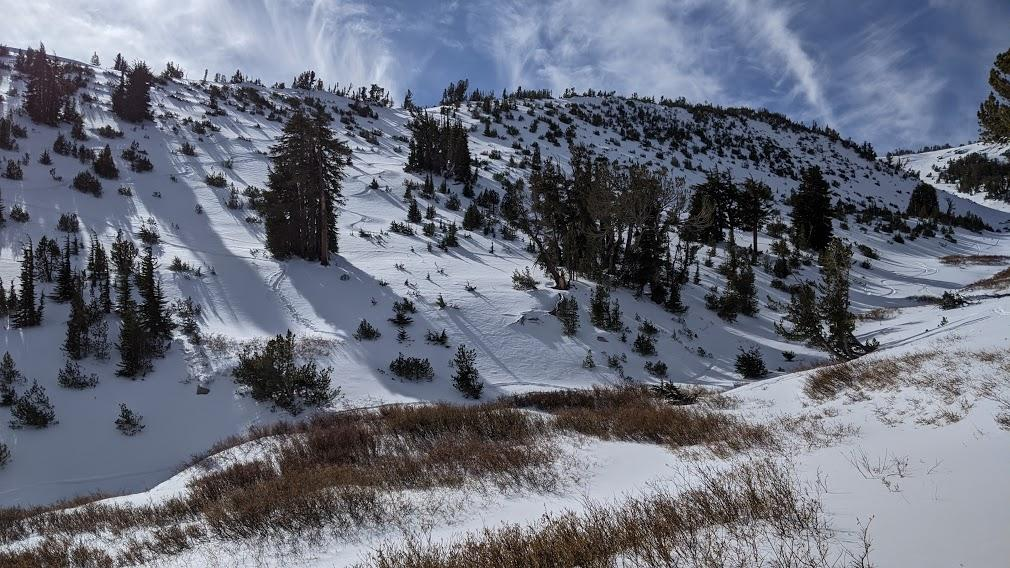 "2&#039; of snow on northerly <a href=""/avalanche-terms/aspect"" title=""The compass direction a slope faces (i.e. North, South, East, or West.)"" class=""lexicon-term"">aspects</a> with many exposed obstacles."