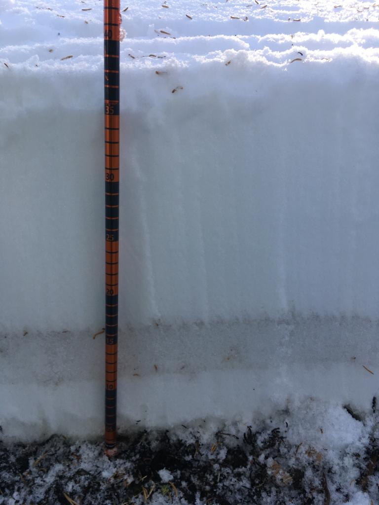 """Clearly define <a href=""""/avalanche-terms/faceted-snow"""" title=""""Angular snow with poor bonding created from large temperature gradients within the snowpack."""" class=""""lexicon-term"""">faceted</a> <a href=""""/avalanche-terms/snow-layer"""" title=""""A snowpack stratum differentiated from others by weather, metamorphism, or other processes."""" class=""""lexicon-term"""">layer</a> that had sintered together quite robustly"""