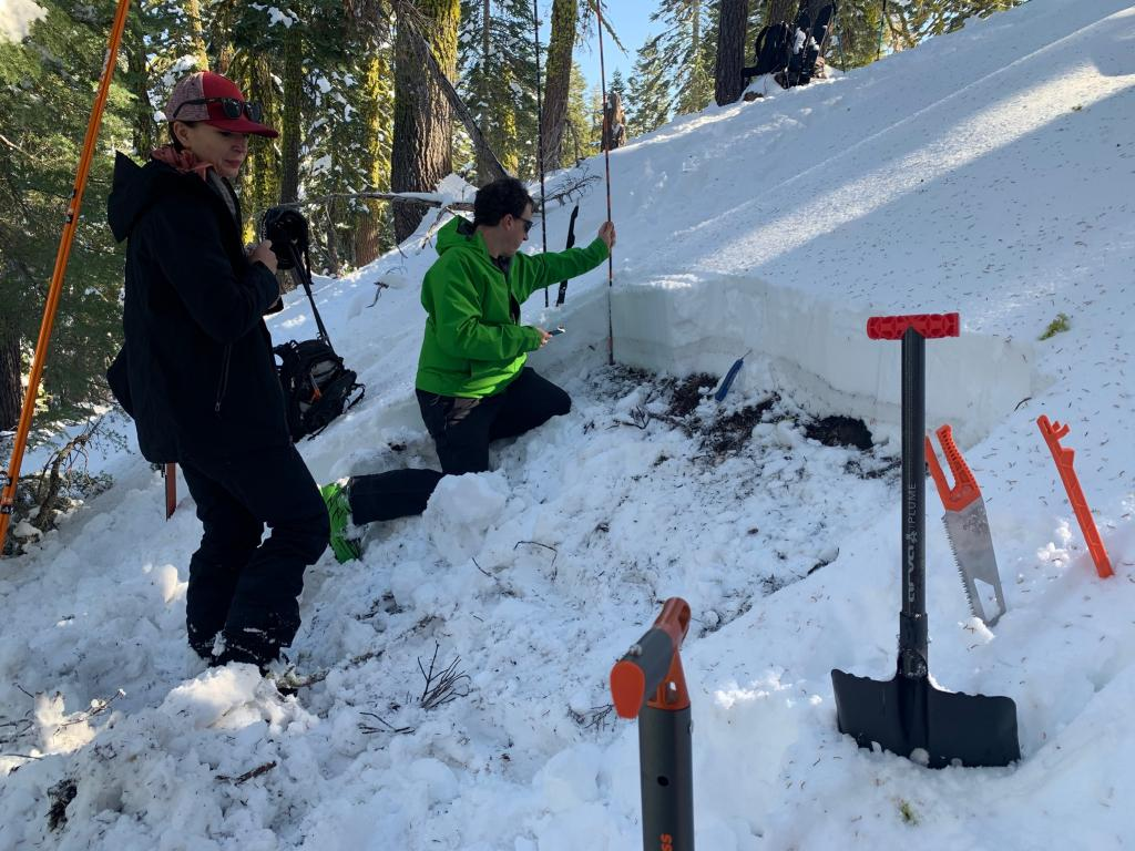 The snowpack was shallow at 36 cm, but quite firm