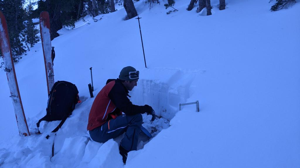 "<a href=""/avalanche-terms/snowpit"" title=""A pit dug vertically into the snowpack where snow layering is observed and stability tests may be performed. Also called a snow profile."" class=""lexicon-term"">Snowpit</a> showing a shallow but mostly supportable snowpack"