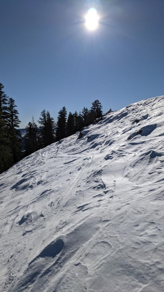 """Previous wind scouring on E <a href=""""/avalanche-terms/aspect"""" title=""""The compass direction a slope faces (i.e. North, South, East, or West.)"""" class=""""lexicon-term"""">aspects</a> at treeline and above treeline."""