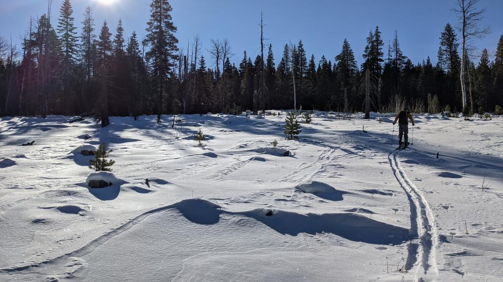 Shallow but supportable snow in a meadow around 6900 ft.