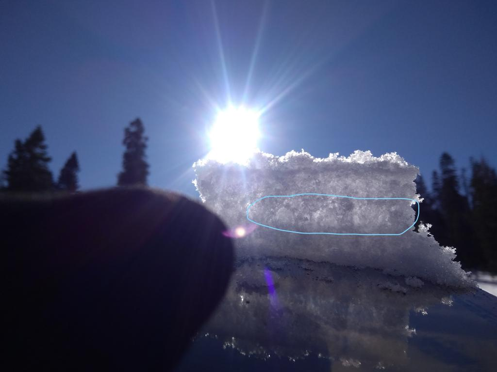 """Large <a href=""""/avalanche-terms/surface-hoar"""" title=""""Featherly crystals that form on the snow surface during clear and calm conditions - essentially frozen dew. Forms a persistent weak layer once buried."""" class=""""lexicon-term"""">surface hoar</a> buried just below surface."""