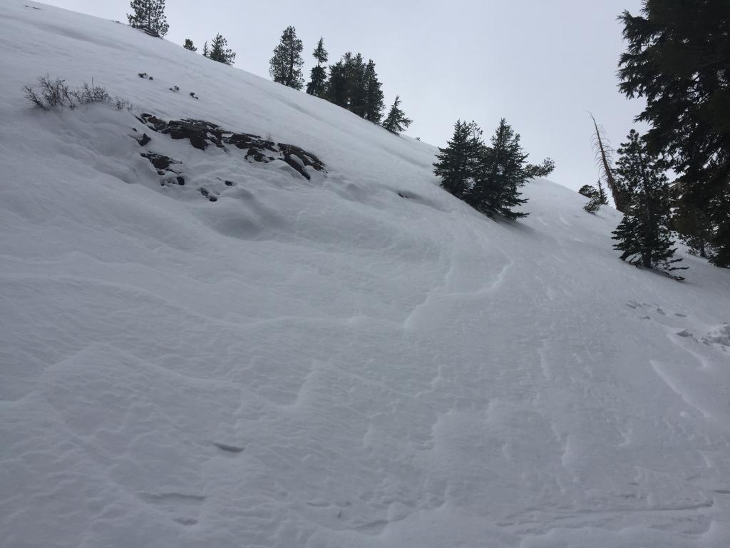 First sign of wind affected snow above 8000'.