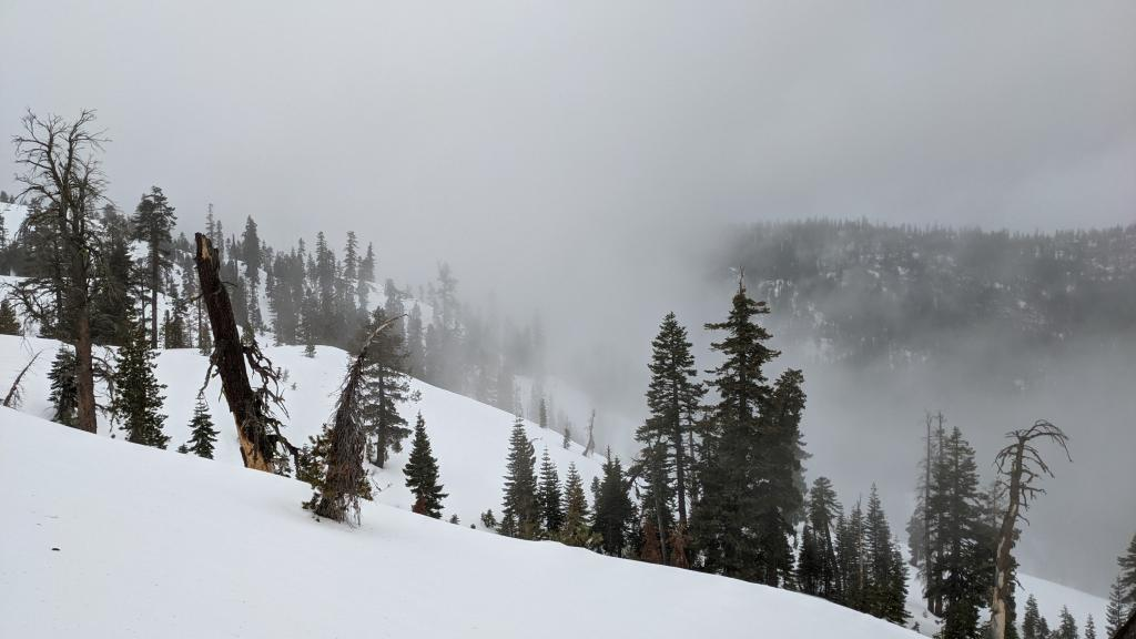 Mist and warm temps all the way to the top of Silver Peak.