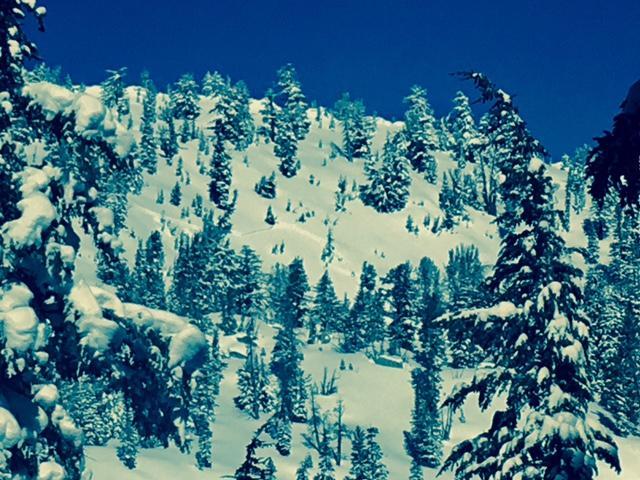 Natural Storm Slab Near Slab Cliffs   Sierra Avalanche Center